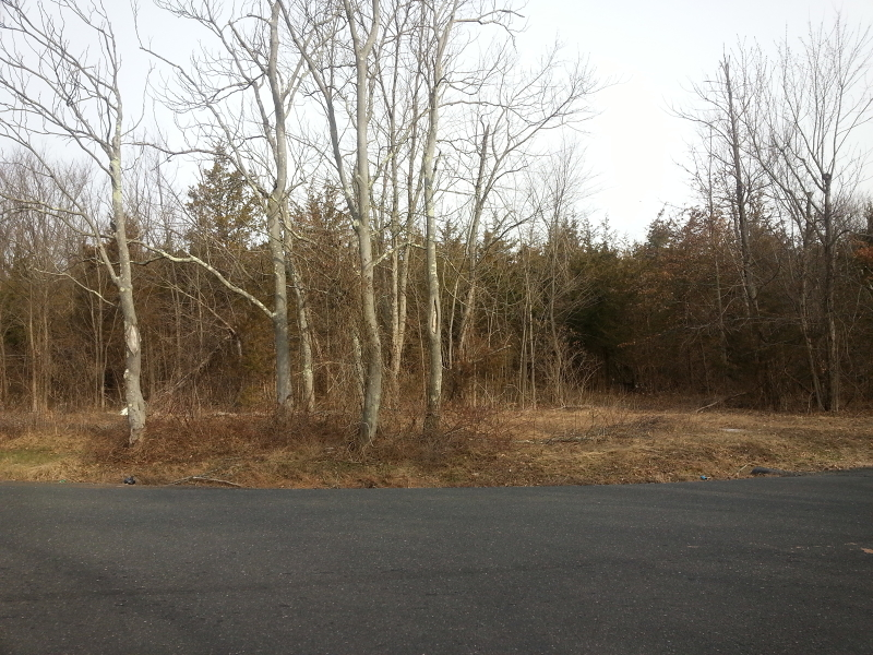 Additional photo for property listing at 274 Skillmans Lane  Somerset, New Jersey 08873 États-Unis
