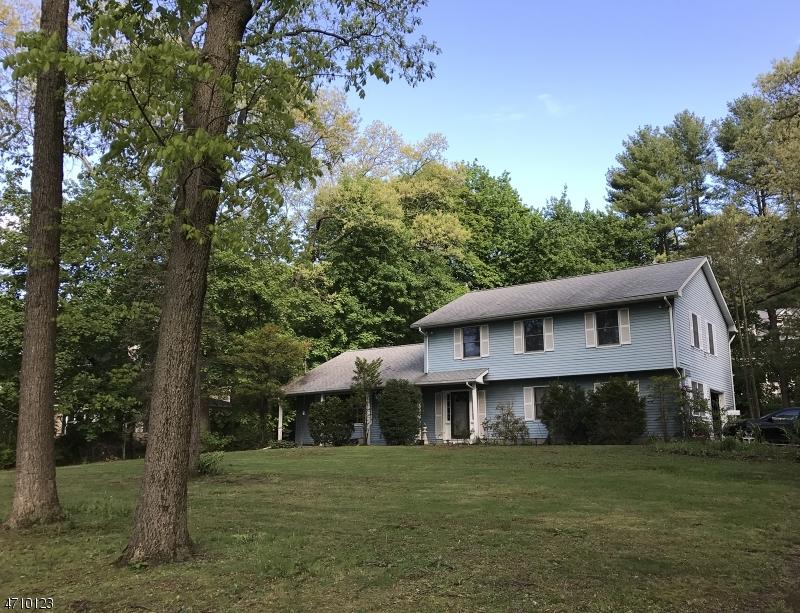 Nhà ở một gia đình vì Thuê tại 241 MORRIS Avenue Mountain Lakes, New Jersey 07046 Hoa Kỳ
