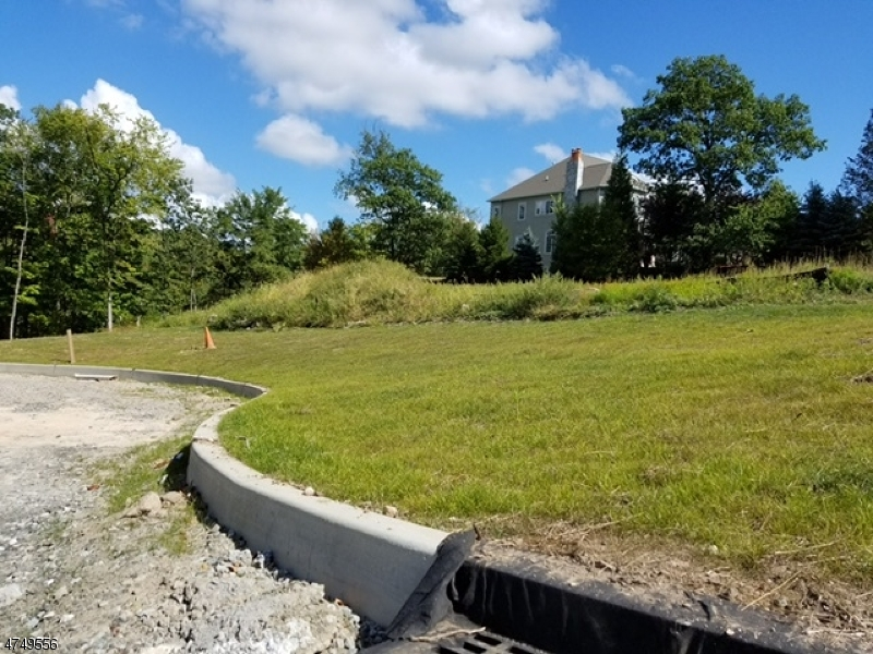 土地,用地 为 销售 在 North Haledon, 新泽西州 07508 美国