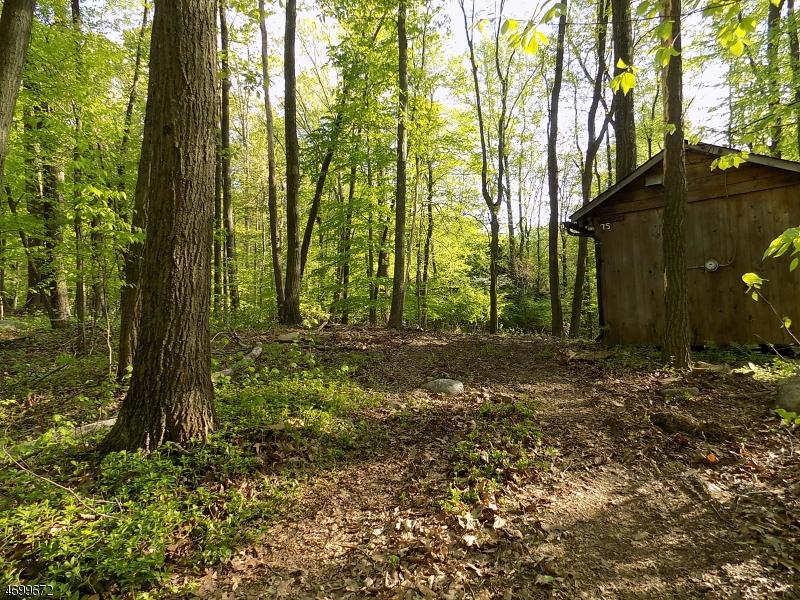 土地 为 销售 在 75 Quenby Mountain Road Great Meadows, 新泽西州 07838 美国