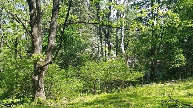 独户住宅 为 销售 在 358 Mountain Lake Road Great Meadows, 新泽西州 07838 美国