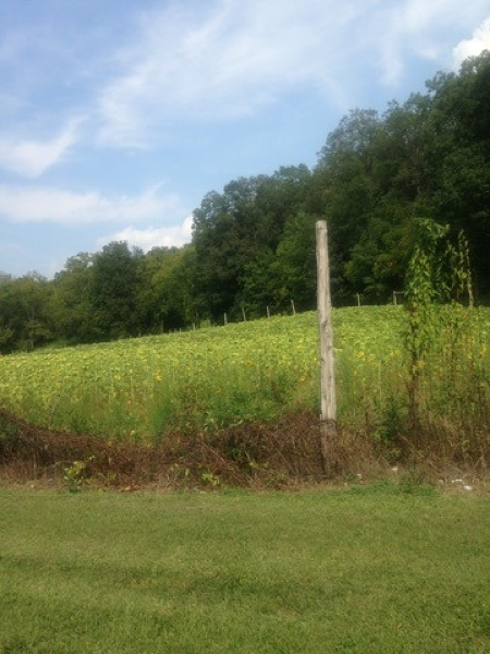 Land / Lots for Sale at 216 Route 206 216 Route 206 Lafayette, New Jersey 07848 United States