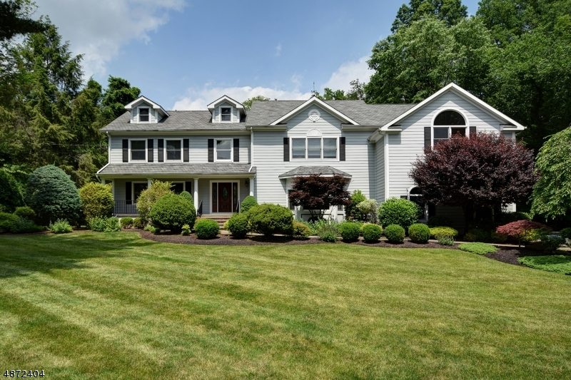 Single Family Home for Sale at 10 BLACK BIRCH Road Scotch Plains, New Jersey 07076 United States
