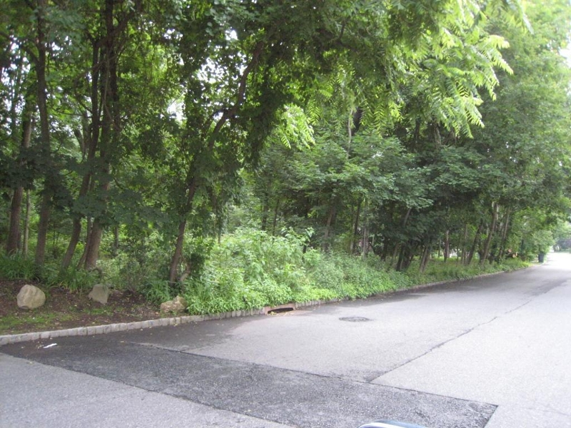 Land for Sale at 124 E MC CLELLAN Avenue Livingston, New Jersey 07039 United States