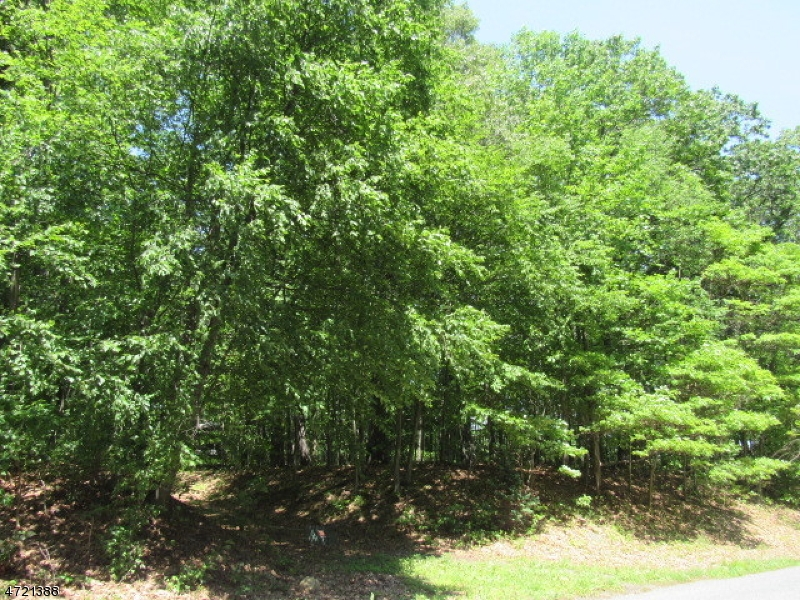 Additional photo for property listing at 395 Buckhorn Drive  White Township, Nueva Jersey 07823 Estados Unidos