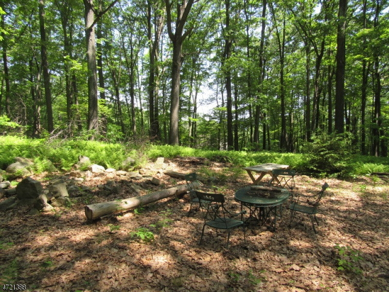 Additional photo for property listing at 395 Buckhorn Drive 395 Buckhorn Drive White Township, New Jersey 07823 Verenigde Staten