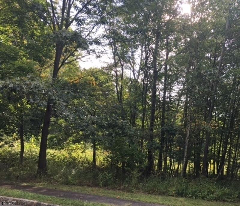 Terrain pour l Vente à 1 Arthur Lane Randolph, New Jersey 07869 États-Unis