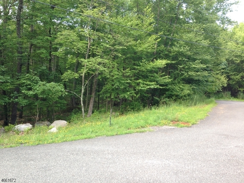 Land for Sale at 1 Durol Drive Montague, New Jersey 07827 United States