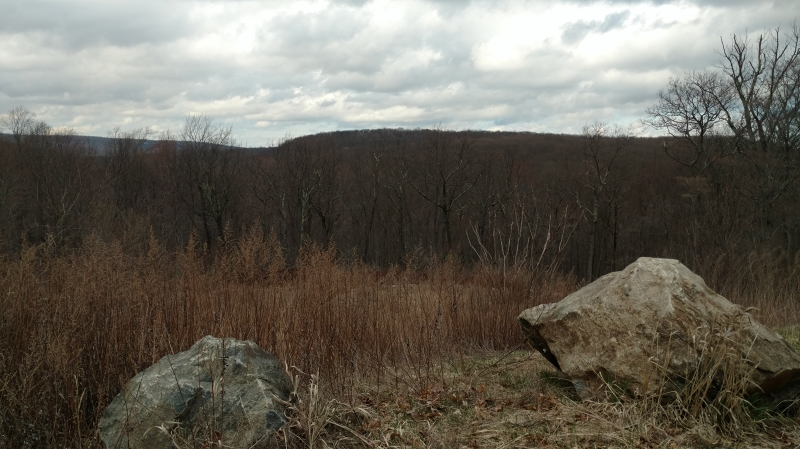 Land for Sale at 236 S Glen Road Butler, New Jersey 07405 United States