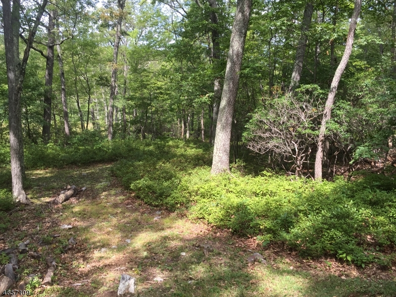 Additional photo for property listing at 14 MOUNTAIN Road  Newton, Nueva Jersey 07860 Estados Unidos