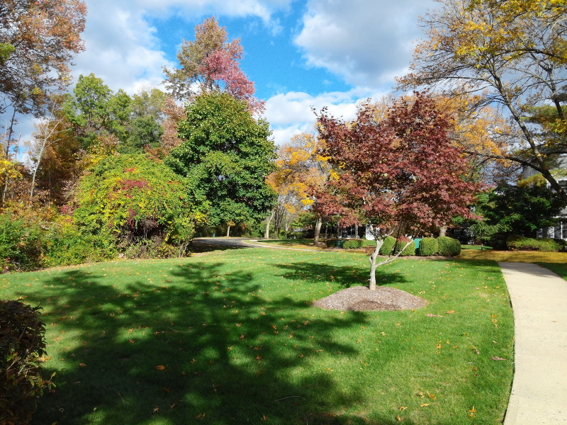 Additional photo for property listing at 100 Countryside Drive  Basking Ridge, New Jersey 07920 United States