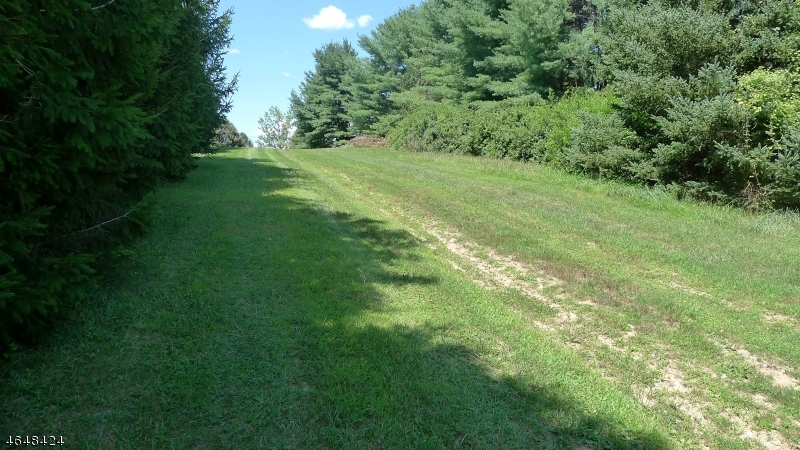 Additional photo for property listing at 45 Primrose Road  Blairstown, Нью-Джерси 07825 Соединенные Штаты