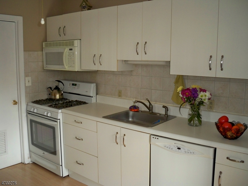 Additional photo for property listing at 43-32 BLOOMINGDALE Drive  希尔斯堡, 新泽西州 08844 美国