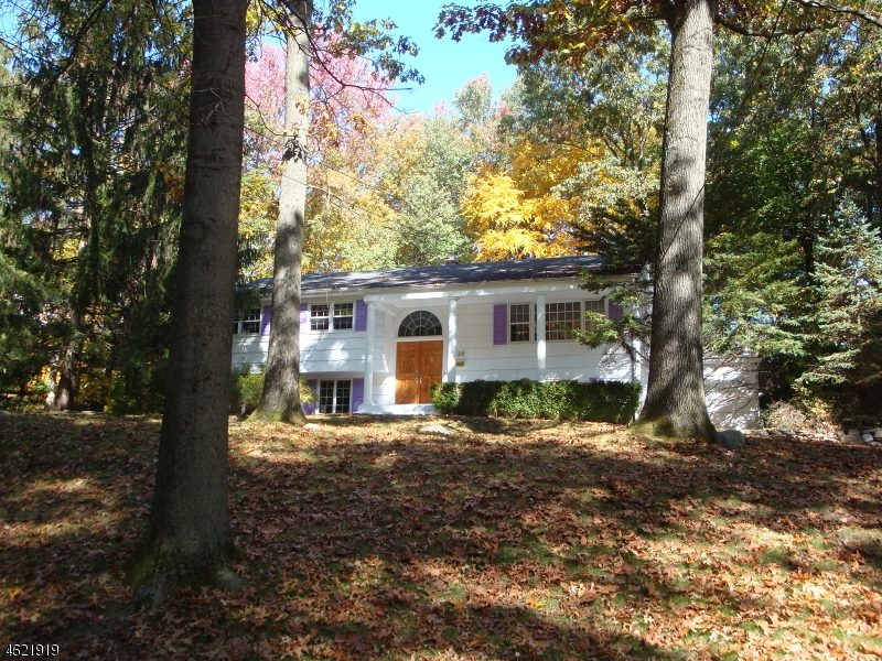 Maison unifamiliale pour l Vente à 220 DONNYBROOK Drive Allendale, New Jersey 07401 États-Unis