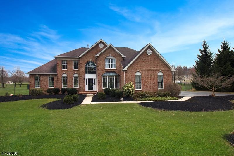 独户住宅 为 销售 在 63 CIRCLE DRIVE Hampton, 新泽西州 08827 美国