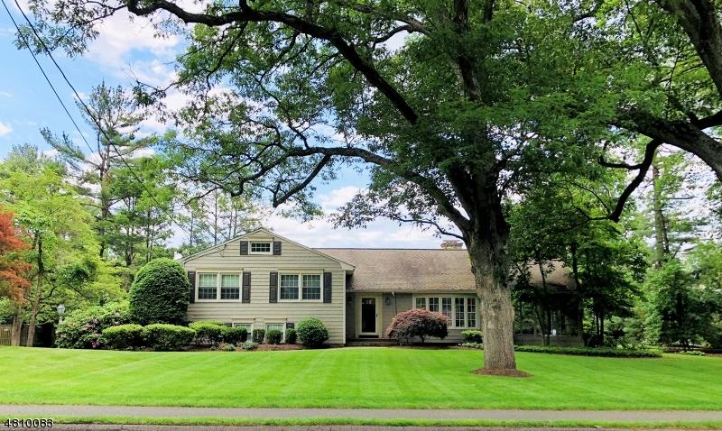 独户住宅 为 销售 在 128 NOE Avenue 查塔姆, 新泽西州 07928 美国