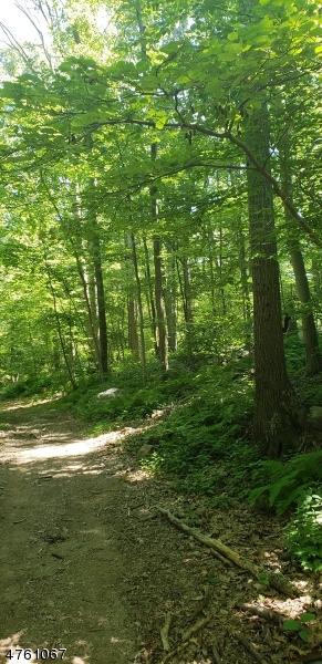 Земля для того Продажа на FERRIS Lane Jefferson Township, Нью-Джерси 07438 Соединенные Штаты