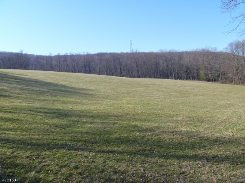 Land for Sale at 177 State Park Road Blairstown, New Jersey 07825 United States