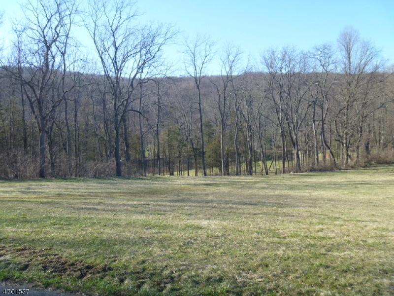 Additional photo for property listing at 177 State Park Road  Blairstown, New Jersey 07825 United States