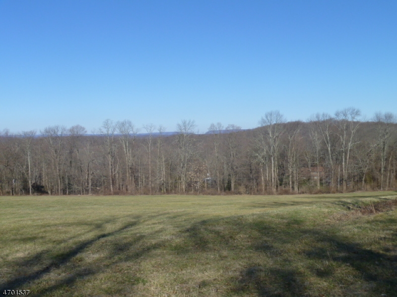 Additional photo for property listing at 177 State Park Road  Blairstown, 新泽西州 07825 美国