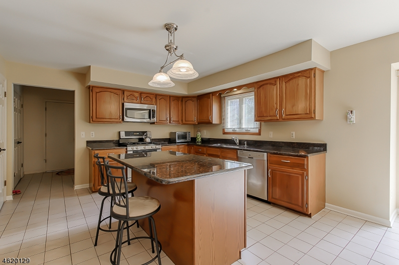 Additional photo for property listing at 1 TULIP LANE  Denville, New Jersey 07834 États-Unis