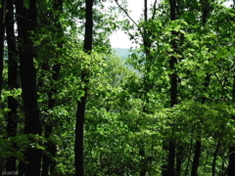 Additional photo for property listing at Hurd Street  Mine Hill, New Jersey 07803 États-Unis