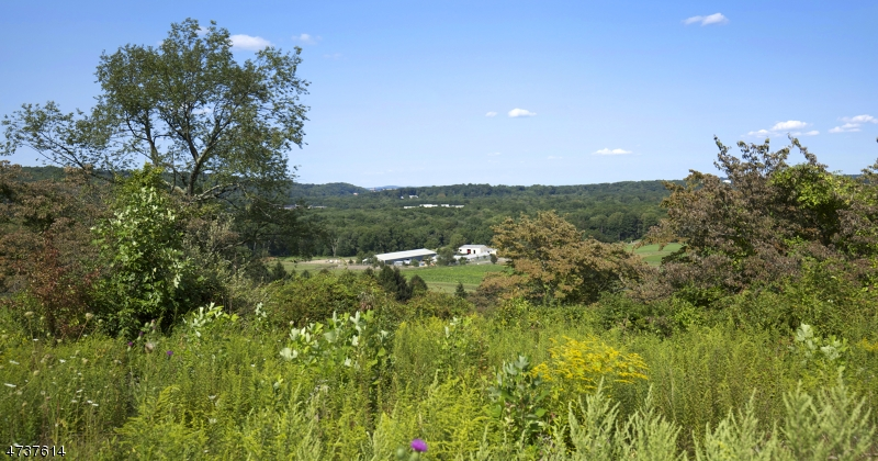 Land / Lots for Sale at 37 Ravenswood Ln Harding Township, New Jersey 07960 United States