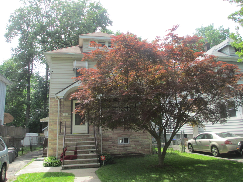 Additional photo for property listing at 206 Pine Street  Roselle, New Jersey 07203 États-Unis