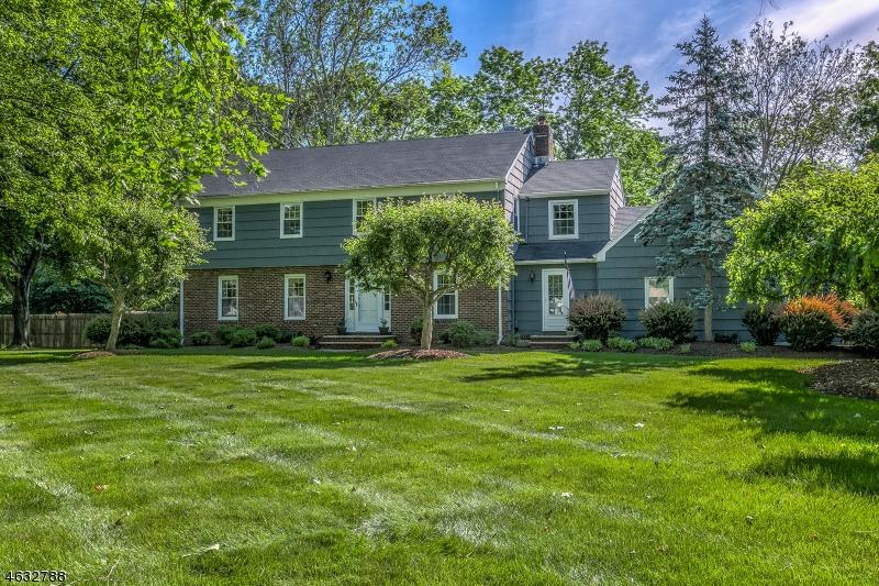 独户住宅 为 销售 在 10 SOUTHFIELD Drive 贝德明斯特, 新泽西州 07921 美国