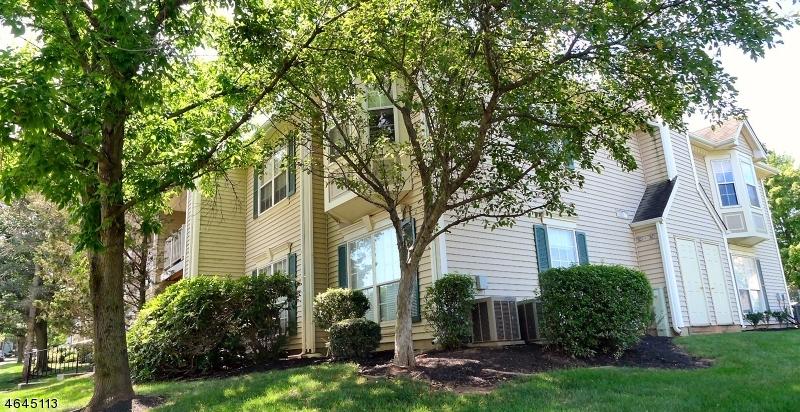 Casa Unifamiliar por un Venta en 110 Reading Circle Bridgewater, Nueva Jersey 08807 Estados Unidos