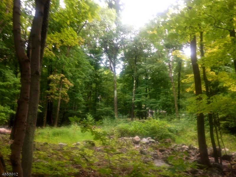 Additional photo for property listing at Address Not Available  Vernon, New Jersey 07461 États-Unis