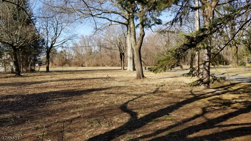 Terrain pour l Vente à 1181 Millstone River Road Hillsborough, New Jersey 08844 États-Unis