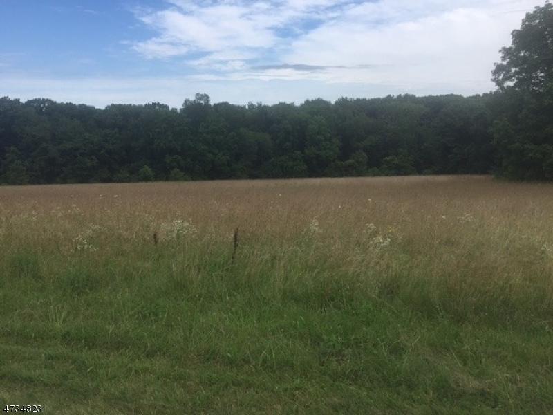 Additional photo for property listing at 255 County Road 513 255 County Road 513 Alexandria Township, Nova Jersey 08825 Estados Unidos