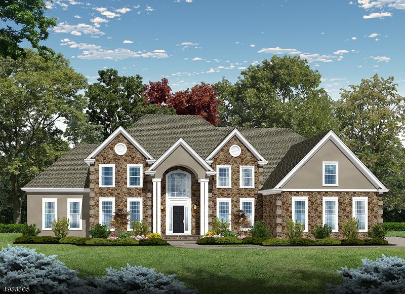 Single Family Homes للـ Sale في Raritan, New Jersey 08822 United States