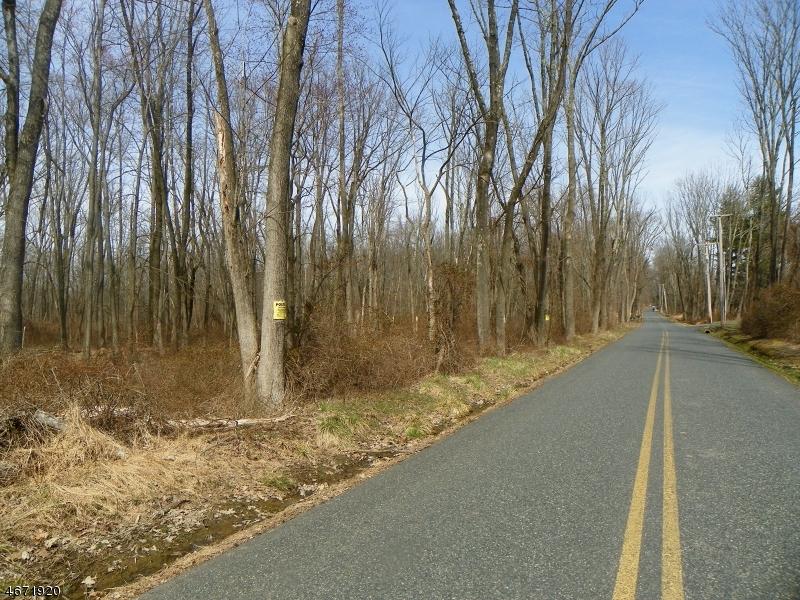 Terrain pour l Vente à 160 Rock Rd W West Amwell, New Jersey 08530 États-Unis
