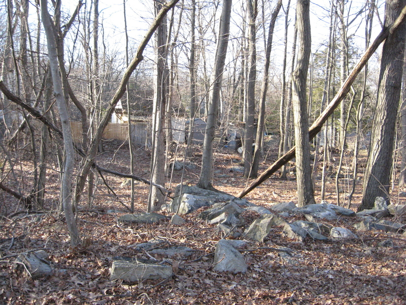 Additional photo for property listing at 116 WELLESLEY Trail  Hopatcong, 新泽西州 07843 美国