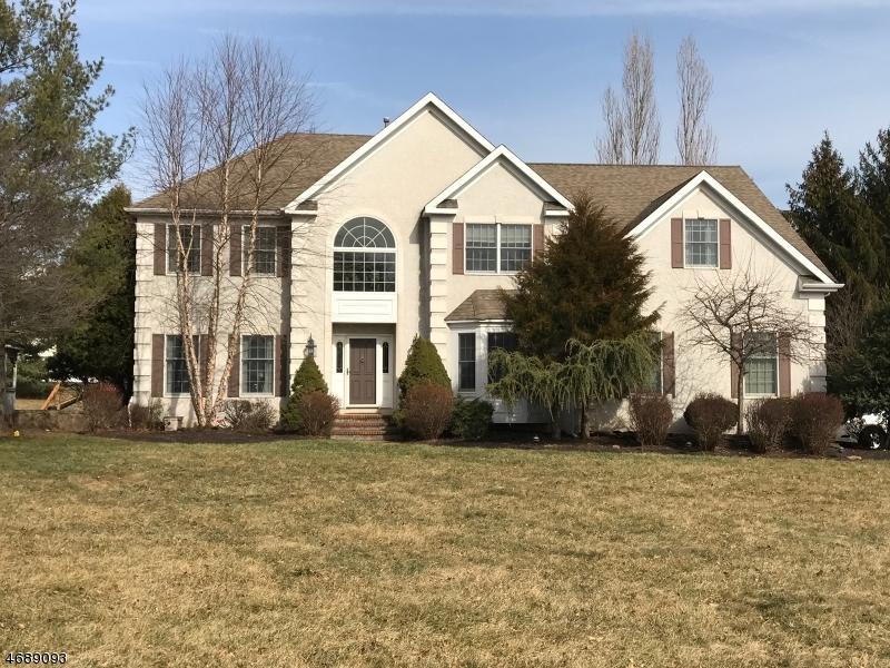 独户住宅 为 销售 在 1 Appletree Drive 安嫩戴尔, 08801 美国
