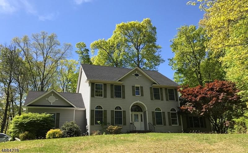 独户住宅 为 销售 在 52 Hunts School Road 牛顿, 07860 美国