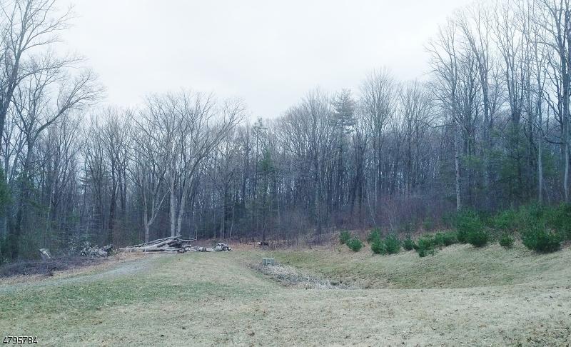 土地,用地 为 销售 在 62 Leslie Drive 西米尔福德, 新泽西州 07480 美国