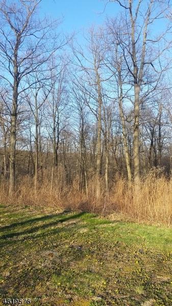 Земля для того Продажа на 729 Woodport Road Sparta, Нью-Джерси 07871 Соединенные Штаты