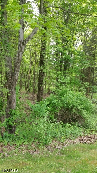 Additional photo for property listing at 268 Barbertown Idell Road  Frenchtown, New Jersey 08825 États-Unis
