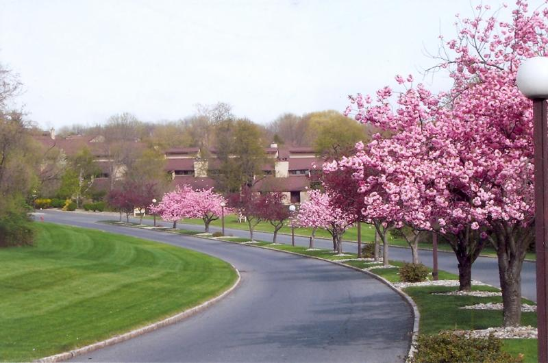 Maison unifamiliale pour l à louer à 37 Hillside Court Clinton, New Jersey 08809 États-Unis
