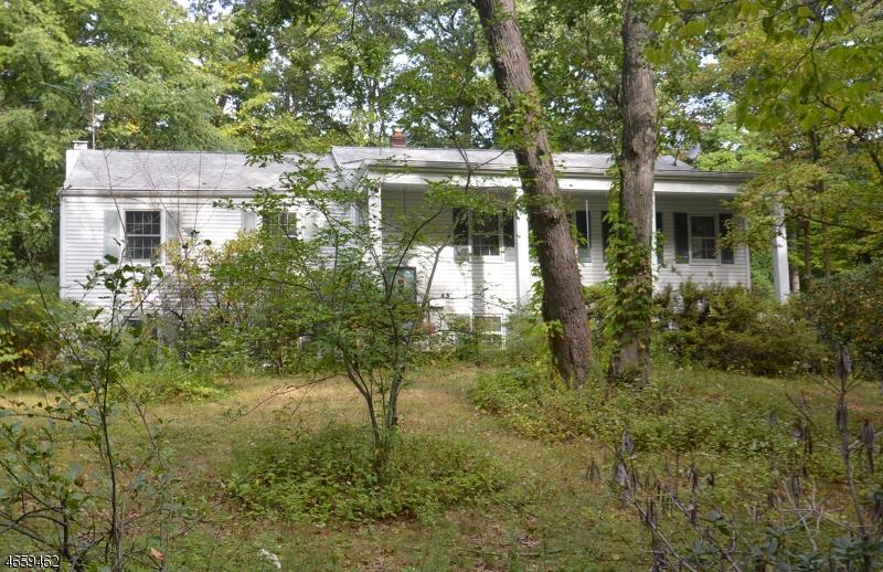 Maison unifamiliale pour l Vente à 43 WOODLAND Avenue Mountain Lakes, New Jersey 07046 États-Unis