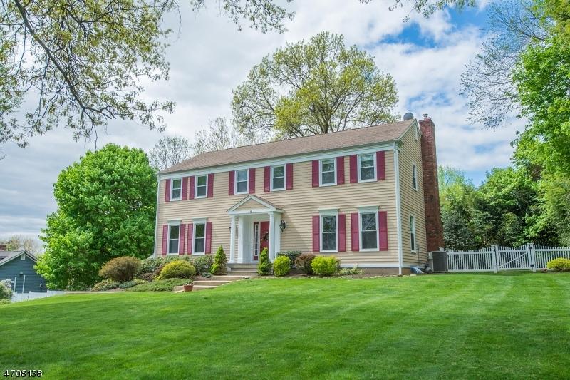 واحد منزل الأسرة للـ Sale في 4 Seward Place Chester, New Jersey 07930 United States