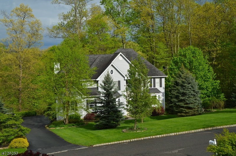 Single Family Home for Sale at 54 Indian Spring Road Budd Lake, New Jersey 07828 United States