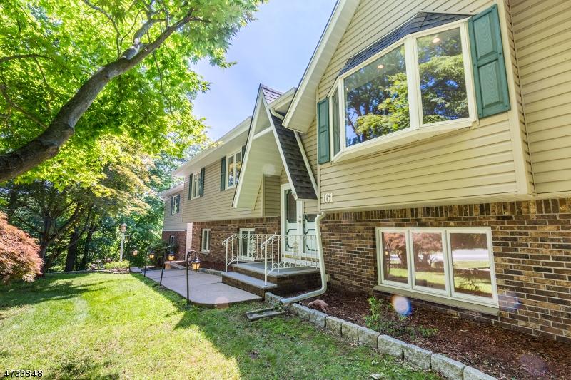 独户住宅 为 销售 在 161 Brooklyn Road 斯坦霍普, 新泽西州 07874 美国