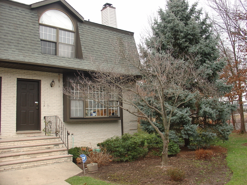 Additional photo for property listing at 125 Falls Bridge Drive  Totowa Boro, 新泽西州 07512 美国