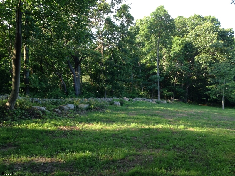 Additional photo for property listing at 27-29 HICKORY RUN Road  Califon, 新泽西州 07830 美国