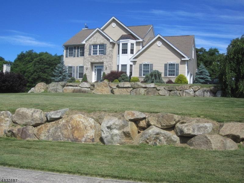 Maison unifamiliale pour l Vente à 116 Junction Road Hampton, New Jersey 08827 États-Unis