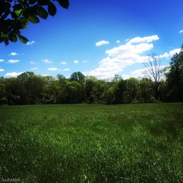 Land for Sale at 22 Pinefield Lane Harding Township, New Jersey 07976 United States